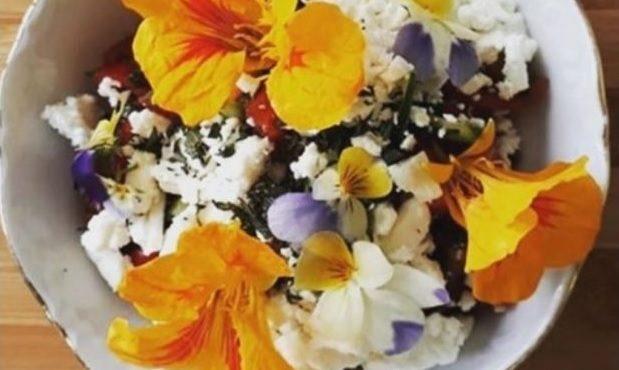Salada Alemã com flores capuchinha e amor-perfeito